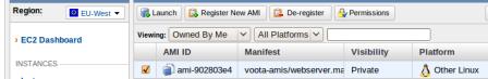 AMI del servidor web de Voota